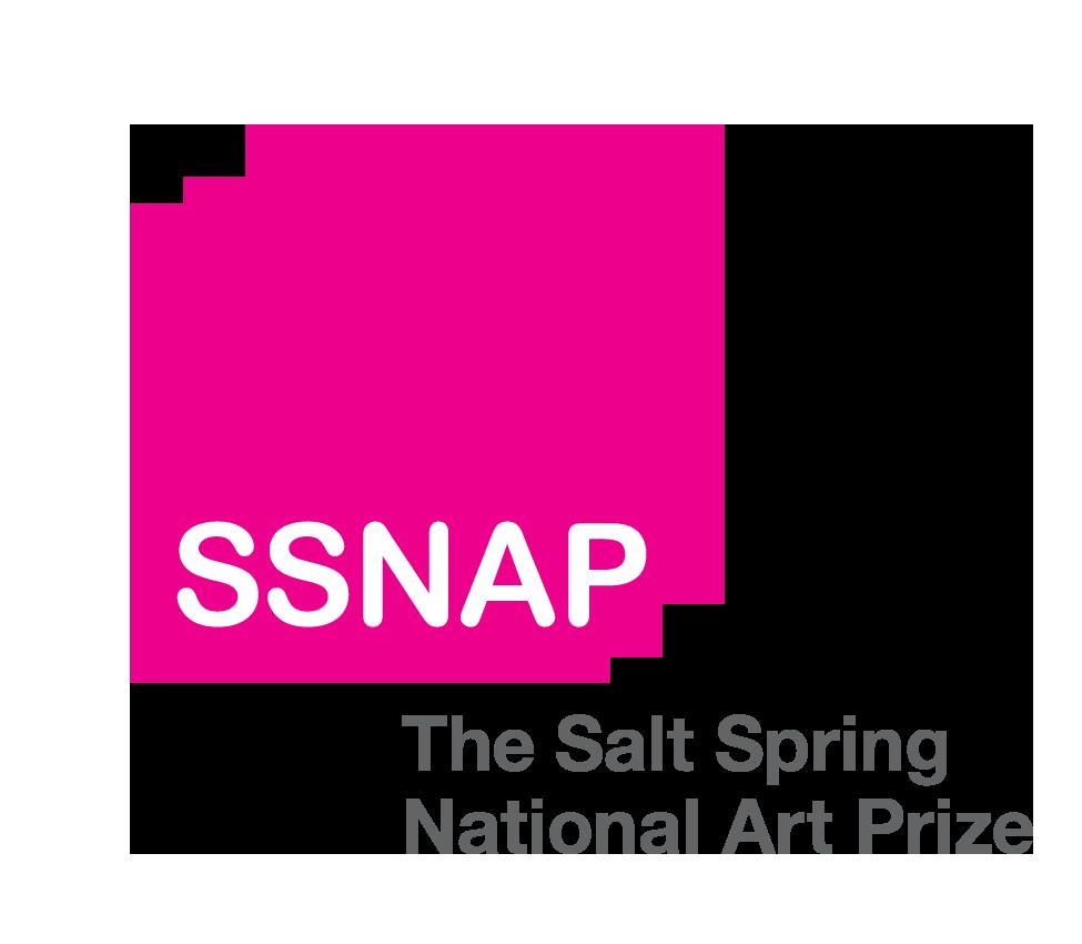 SSNAP 2019